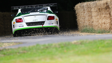 Goodwood Festival of Speed 2017 - Bentley Continental GT3 face arrière